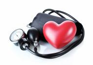 Růstový hormon potřebují i cévy a srdce