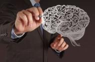 Potvrzeno: Když chybí růstový hormon, mozek pracuje hůř