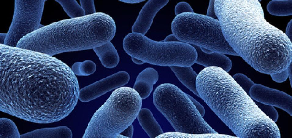 Roztroušená skleróza: když se bílé krvinky obrátí proti vlastnímu tělu