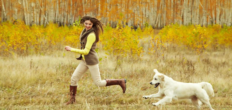 Roztroušená skleróza může za poruchy rovnováhy. Balanc pomáhají udržovat psi!