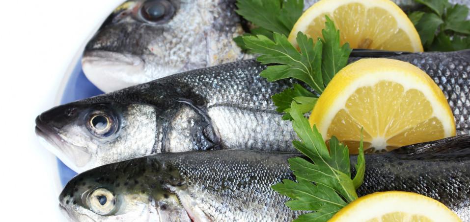 Ryby, káva a alkohol: Dokážou zpomalit roztroušenou sklerózu?