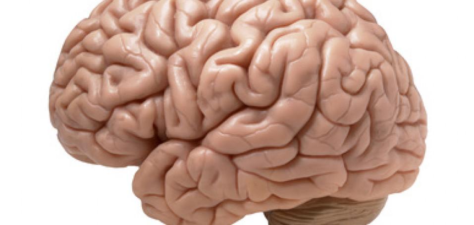 Když mozek začne selhávat dřív, než dozraje