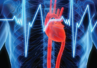 Úloha praktického lékaře při záchytu fibrilace síní