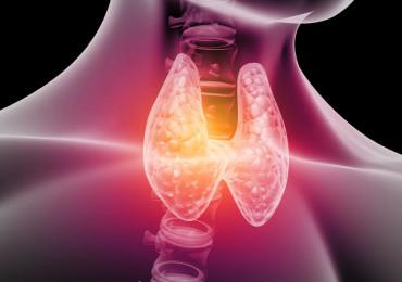 12. ročník Týdne štítné žlázy a epidemiologie tyreopatií