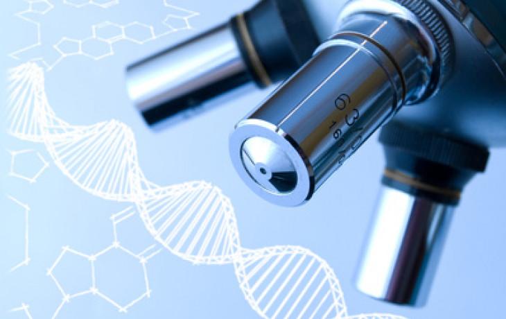 Genetické vyšetření embrya – může prozradit mnoho