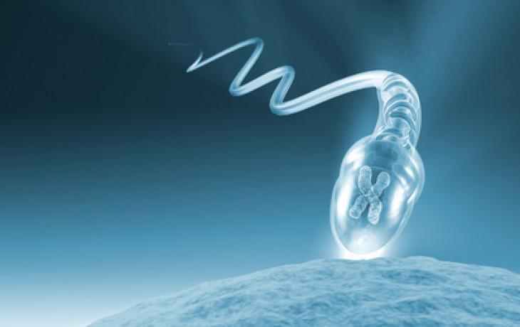 Proč se spermiím nedaří
